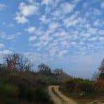 entre les hameaux des Gaudins et des Péroublets