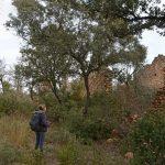 ruines d'une ancienne ferme