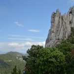 Dentelles Sarrasines
