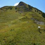 Col de Grisonnière
