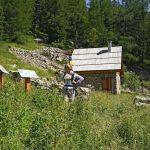 Cabane de Michard