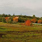 Domaine de Blanchon